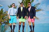 Bermuda Shorts Trio VI print