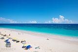 Coral Beach Club Umbrellas print