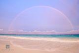 Elbow Beach Rainbow print