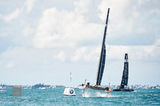 Oracle Team USA & Softbank III print