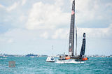 Oracle Team USA & Softbank II print