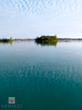 Fern Island View print