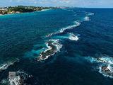 Barrier Reef print