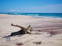Sable Beach IV