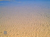 ripples, sand, beach, water, low tide