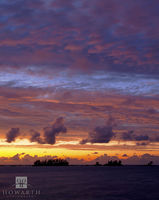 kings, point, somerset, mangrove, bay, light, fades, horizon, pink, purple, sunset, sky, silhouette