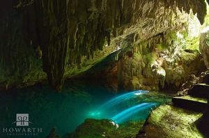 Tom Moore's Jungle Cave