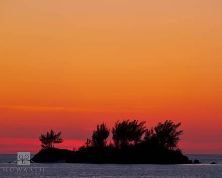kings, point, sunset, mangrove, bay, somerset, silhouette