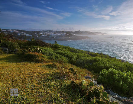 devonshire, morning, mist, offshore, smiths