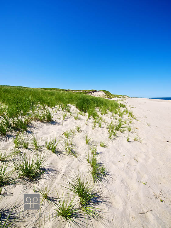 Sable Beach