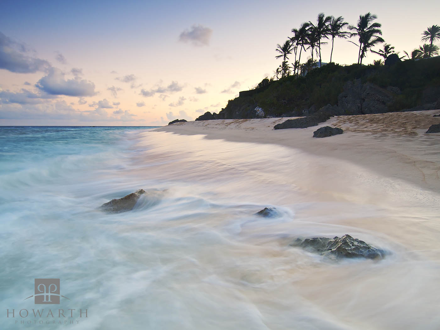south, shore, palms, warwick, long, bay, silhouette , photo