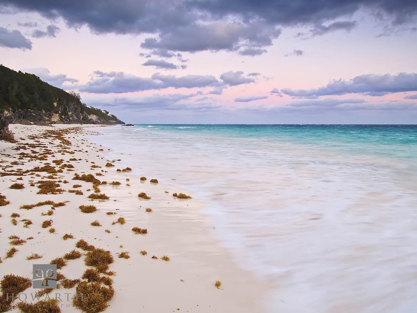 sea, weed, seaweed, beach, sunrise, morning, south, shore, photo